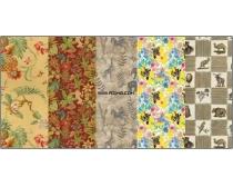 7张热带动物与花纹背景图片素材