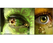 74张神奇的眼睛特写图片素材