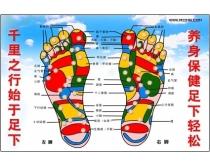 足浴足部反射示意图psd分层素材
