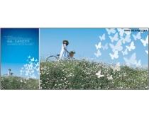 自然生态野花丛图片素材