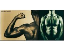 40张男性身体图片素材