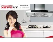 李湘代言的先飞厨卫广告