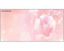 粉红玫瑰强化玻璃移门图片