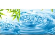 水滴与绿叶高清图片