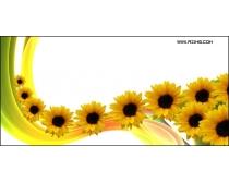 动感线条与向日葵高清图片