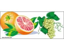 7款矢量水果图片素材