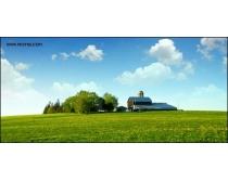 草地树林房屋高清图片