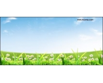 清新野花草地风景高清图片