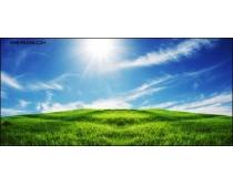 午后阳光下的草地风景图片
