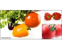 13张蔬菜高清图片