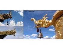 6張藏式寺院龍首飛檐高清圖片