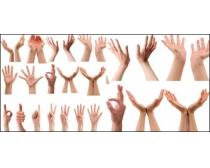 手势图片4