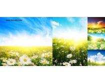 漂亮自然风景高清图片(5P)