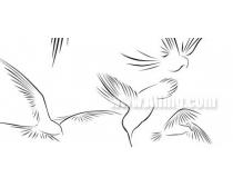 绘画鸟类笔刷