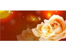 梦幻白色玫瑰移门图案矢量素材