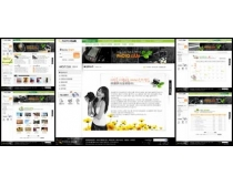 摄影天地网页模板