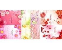 春天粉色花朵背景时时彩平台娱乐