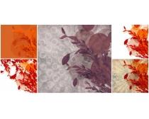 花卉背景圖片素材