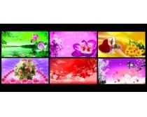 绚丽鲜花花卉背景设计PSD素材