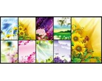 温馨鲜花花卉背景设计PSD素材