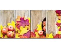 枫叶与水果高清图片