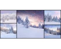 雪地景色高清图片素材