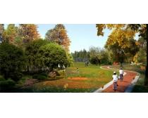 绿化园林环境景观PSD素材