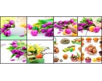 郁金花與蛋糕高清圖片