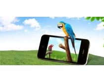 手机与鹦鹉绿色风景PSD素材
