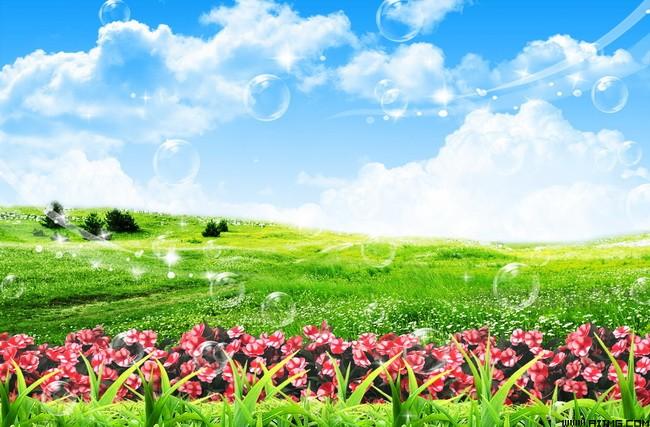 壁纸 草原 成片种植 风景 植物 种植基地 桌面 650_427