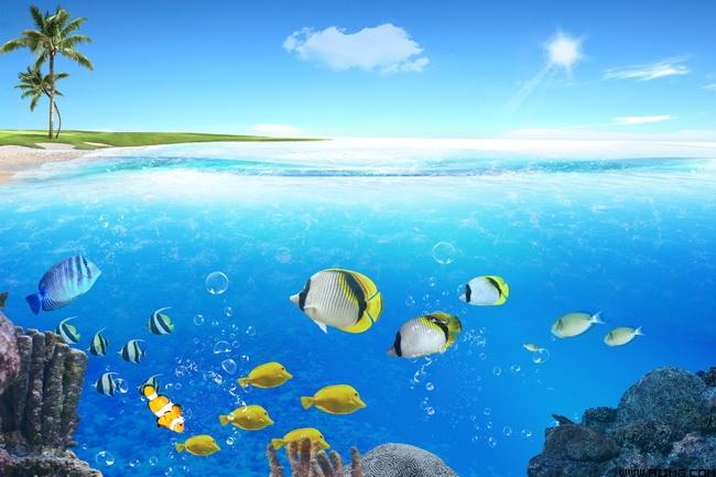 海洋世界风景图片素材