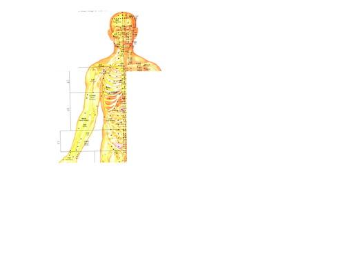 13款针灸挂图psd分层素材