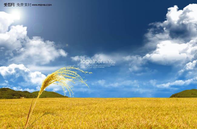 蓝天草原风景图片素材