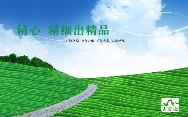 psd素材 自然生态 > 素材信息   关键字: 茶园茶园风景蓝天白云风光