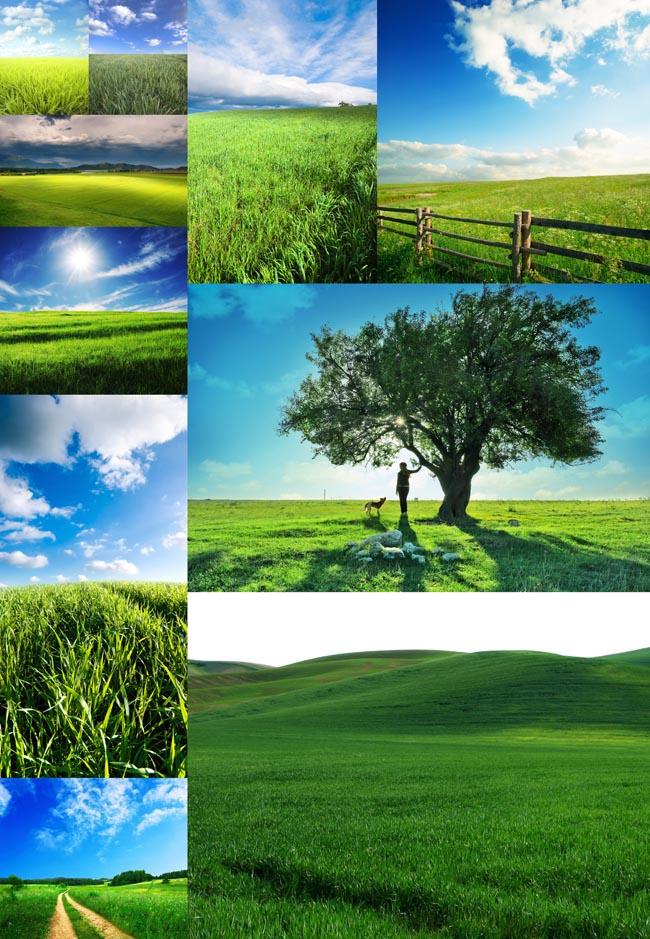 首页 高清图片 自然风光 > 素材信息   关键字: 绿色自然风光自然风景