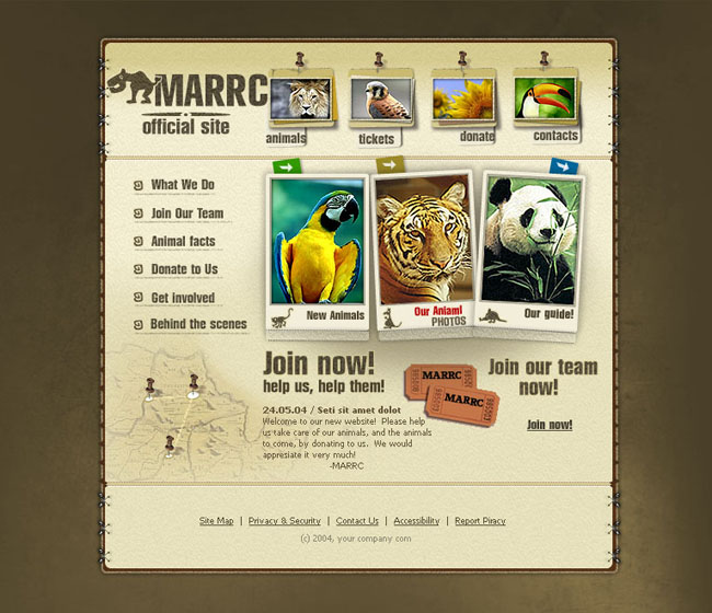 动物图片英文网站模板