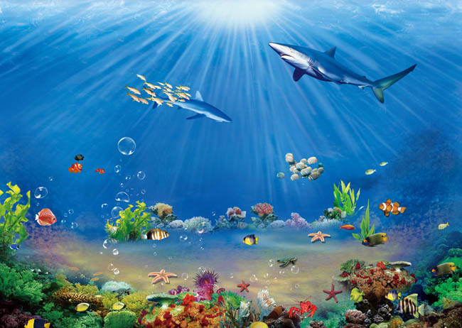海底世界背景psd素材