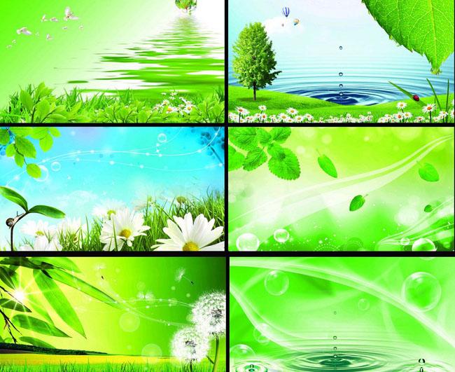 清爽 展板背景 背景展板 板模板 环保背景 绿色 生态展板 春天展板