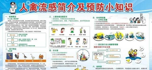 h7n9禽流感预防小常识矢量素材(650x298)-怎样预防h7n9禽流感 预图片