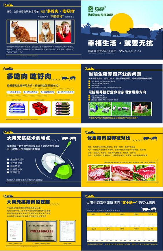 关键字:猪肉生态肉类广告画册设计画册荞麦猪肉猪肉食品产品封面生态简介清粮机图片